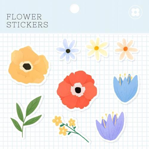 Flower stickers package vector