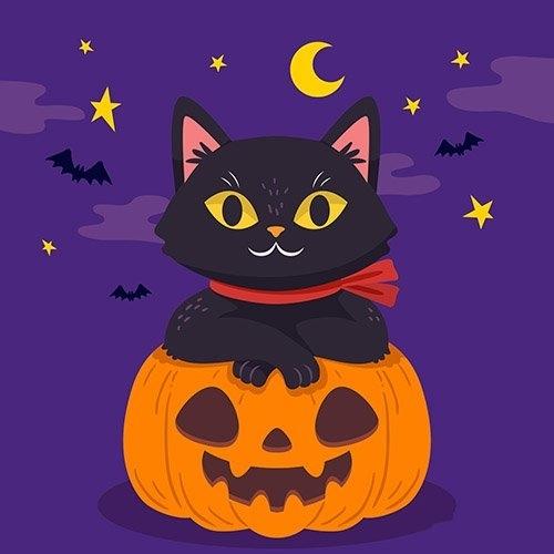 Hand drawn design halloween cat vector