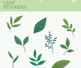 Leaf stickers package vector