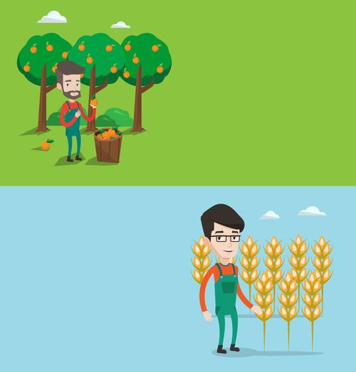 Picking fruits flat design vector