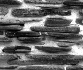 Black stone texture vector
