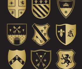 Shield different patterns heraldry vector