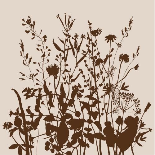 Silhouette contour wild flowers background vector