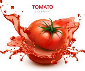 Tomato juice splash vector