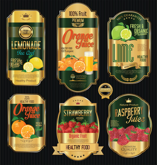Various fruits label vector