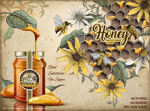 Wild honey advertising vector