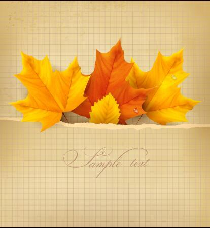 Autumn leaves vector on graph paper