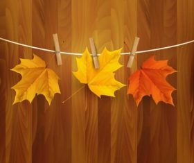 Clip autumn leaves vector