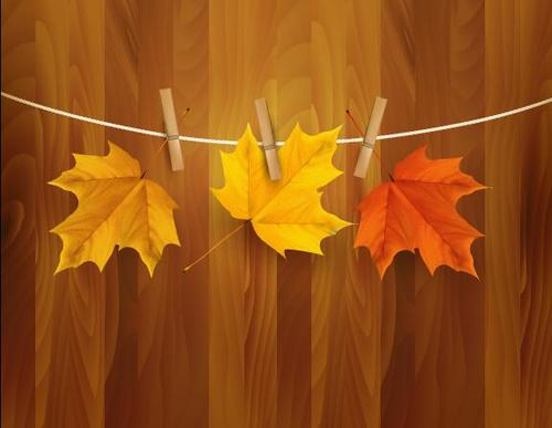 Clip autumn leaves vector