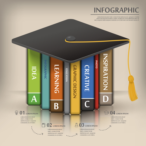 Education graphic design infographic options vector