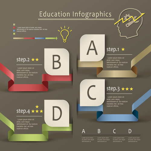 Education infographic options vector