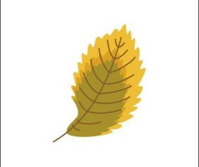 Elm leaf vector