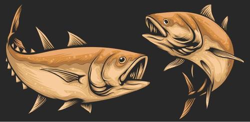 Fish hand drawn illustration vector