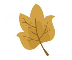 Tulip tree leaf vector