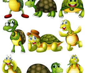 All kinds of turtle cartoon vector