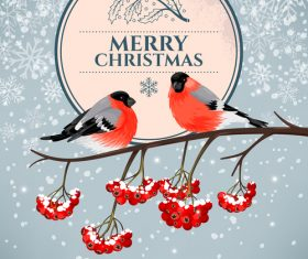 Bird cover christmas card vector