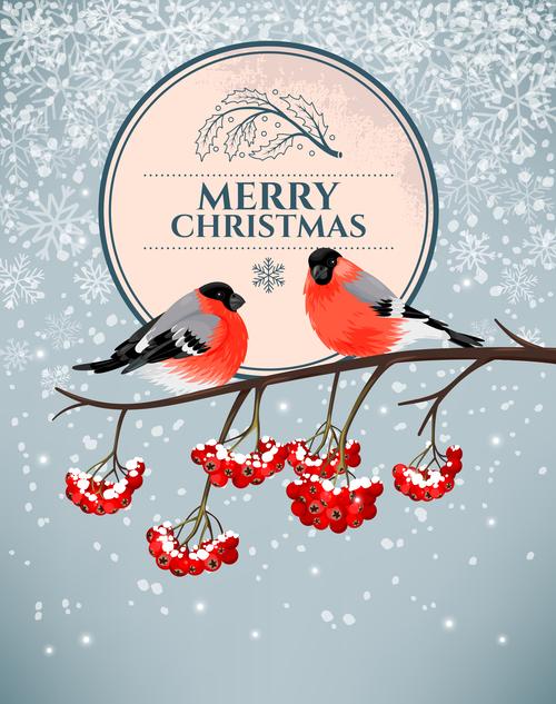 Bird cover christmas card vector