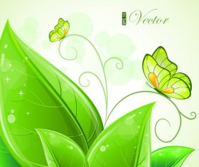 Butterfly and green leaf background vector
