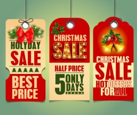 Christmas holyday sale label vector
