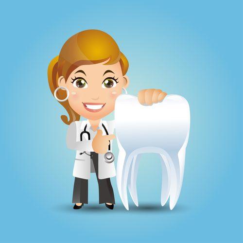 Female dentist presenting teeth cartoon vector