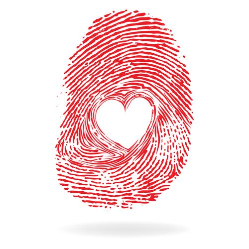 Fingerprint heart pattern vector