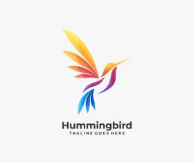 Humming bird logos vector