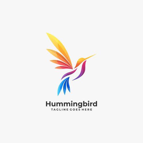 Humming bird logos vector