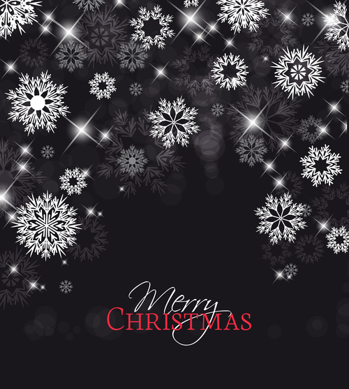 Snowflake background christmas greeting card vector