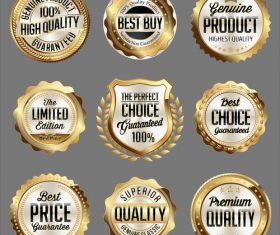 The perfect choice label sticker vector