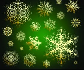 Various gold snowflakes vector