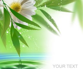 White flowers and green leaves vector