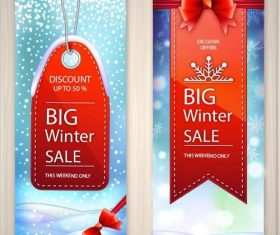 Banner winter sale vector