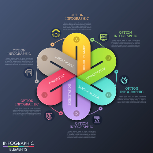Hexagon sticker infographics options vector