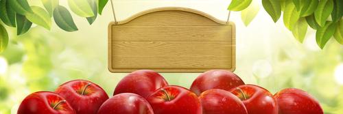 Red apple and wooden billboard vector