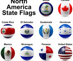 Spherical north america state flags vector