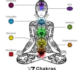 The 7 chakras of the human body vector