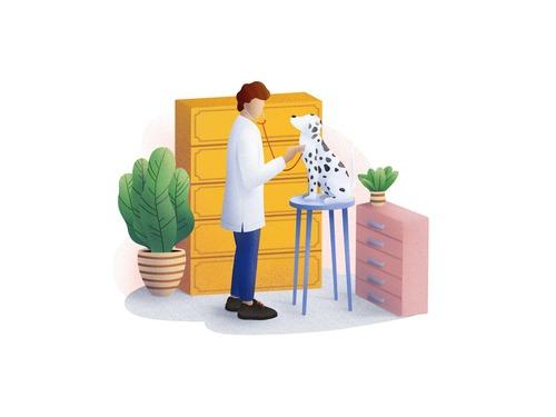 Veterinarian cartoon illustration vector