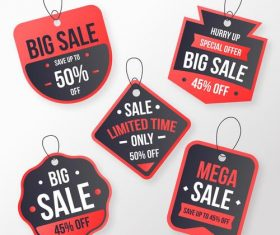 Big sale flat label design vector