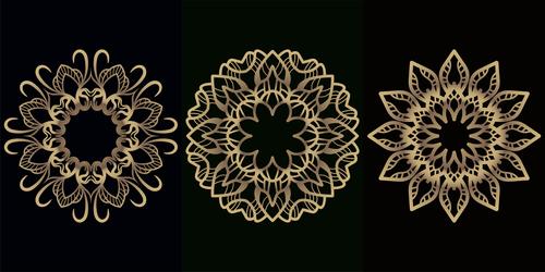 Different style mandala decoration vector