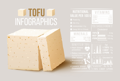 Tofu Infographics vector