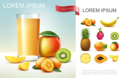 3d illustration fruit food realistic vector