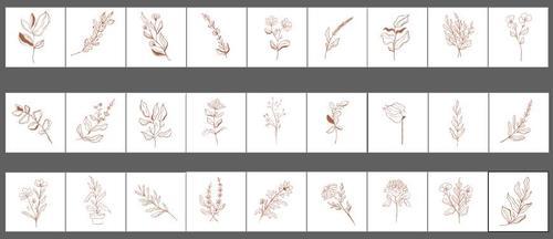 Botanical line art illustration vector