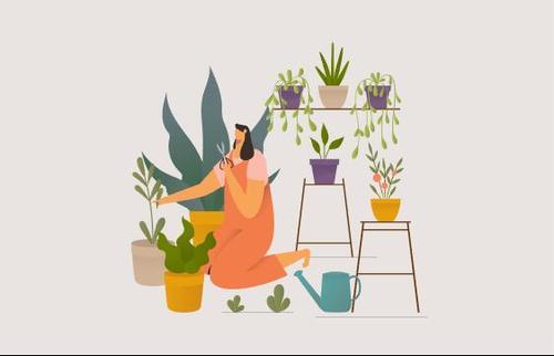 Girl taking care houseplants illustration vector
