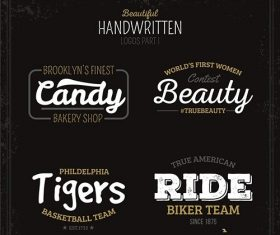 Beautiful handwritten logos vector