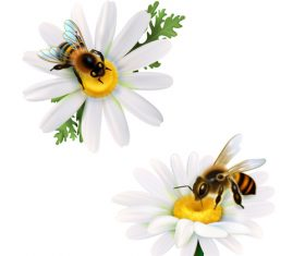 Bee collecting nectar background vector