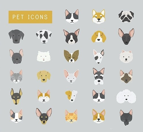 Cats and dogs icon collection vector
