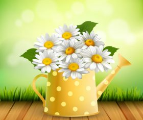 Chamomile flower arrangement vector