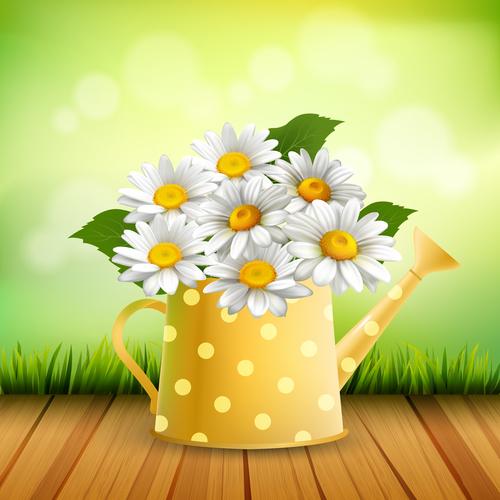 Chamomile flower arrangement vector