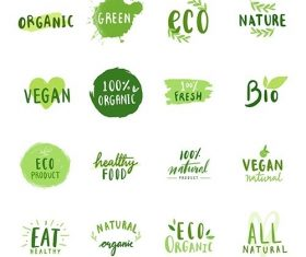 Collection of environmental friendly typography vector