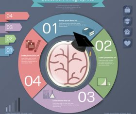 College education infographic concept vector
